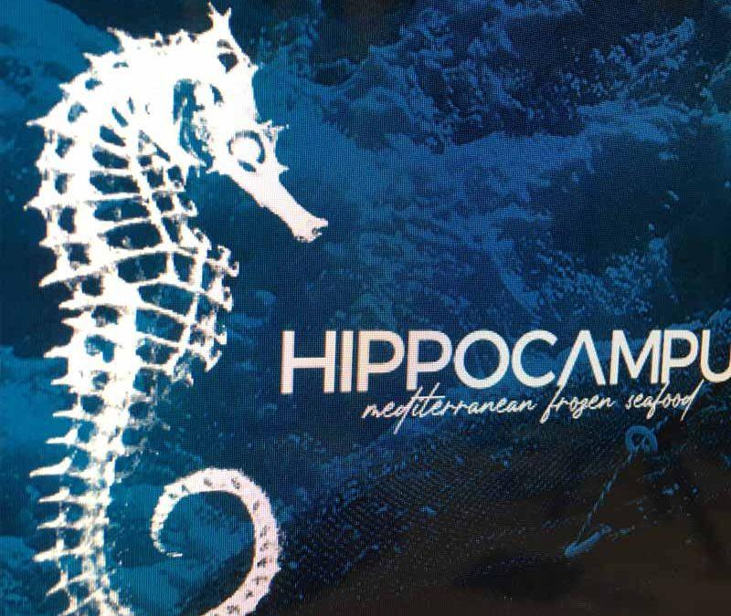 Imagen Corporativa Mariscos Hippocampus